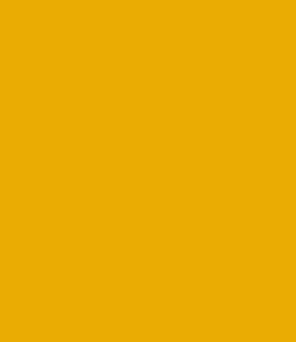 yellow-hexagon-bg
