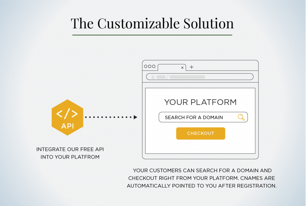 customizable solution infographic